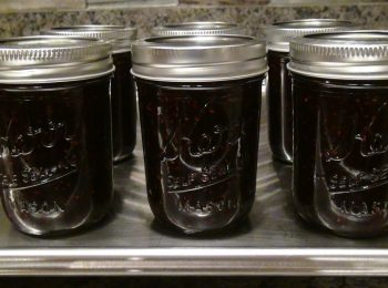No Pectin Blackberry Freezer Jam