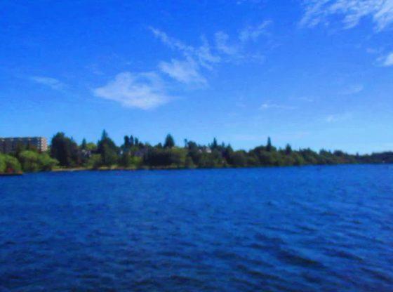 Green Lake Park Seattle